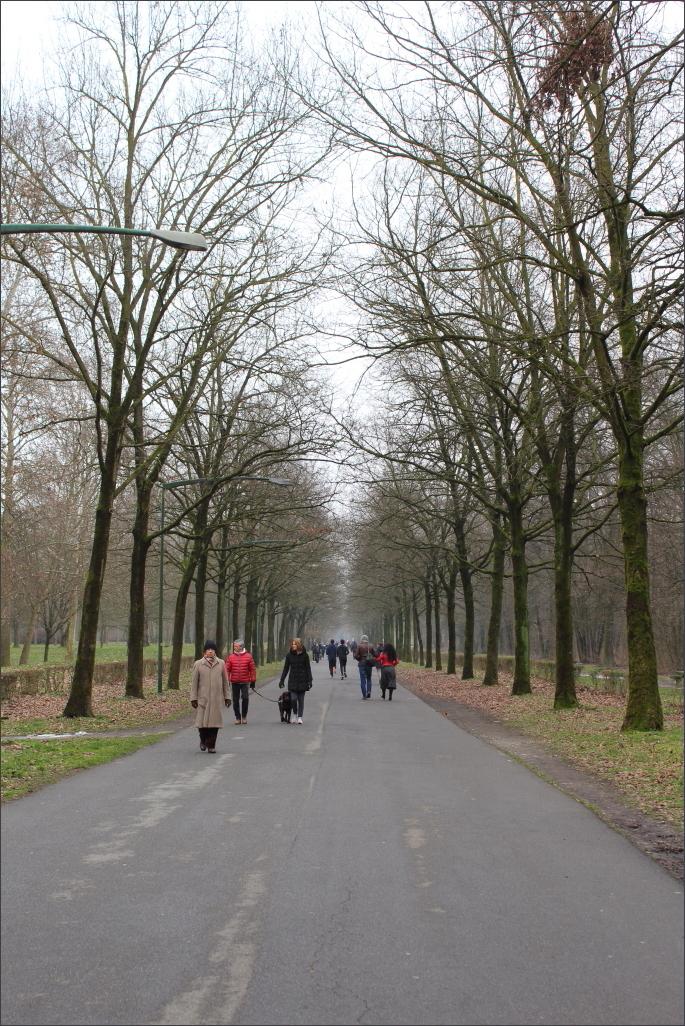 Inverno-Parco-di-Monza