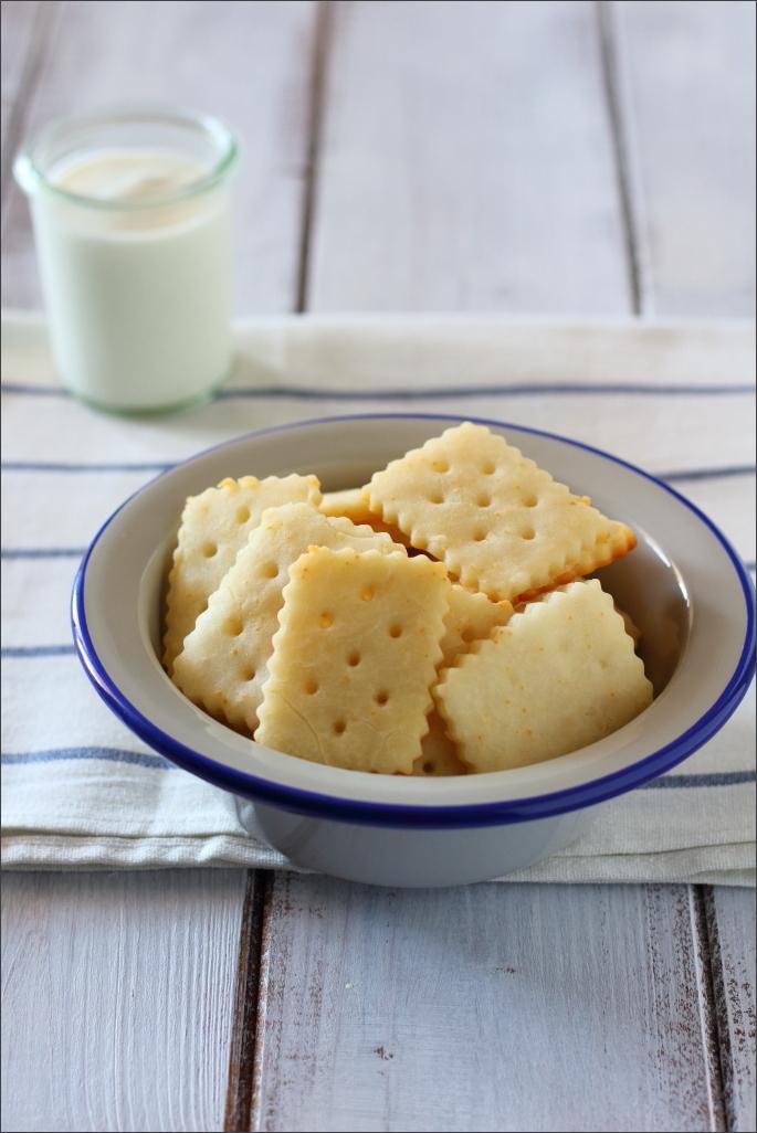 Yogurt-fatto-in-casa-e-biscotti-di-riso-e-yogurt